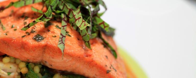 salmon entre